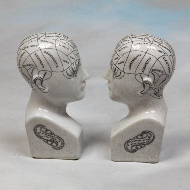 Ceramic Phrenology Head Bookends