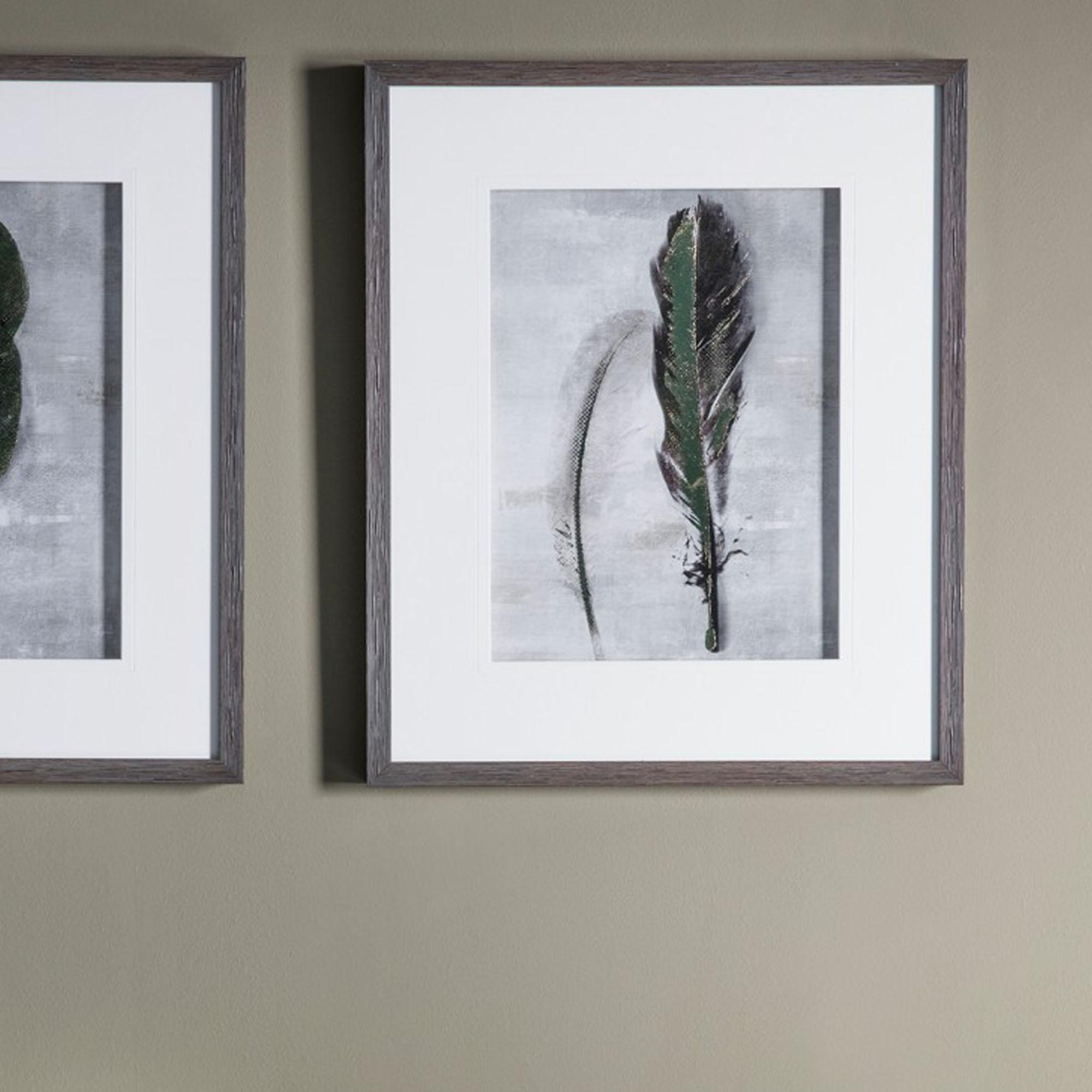 Feather 2 Framed Art Framed Art Homesdirect365