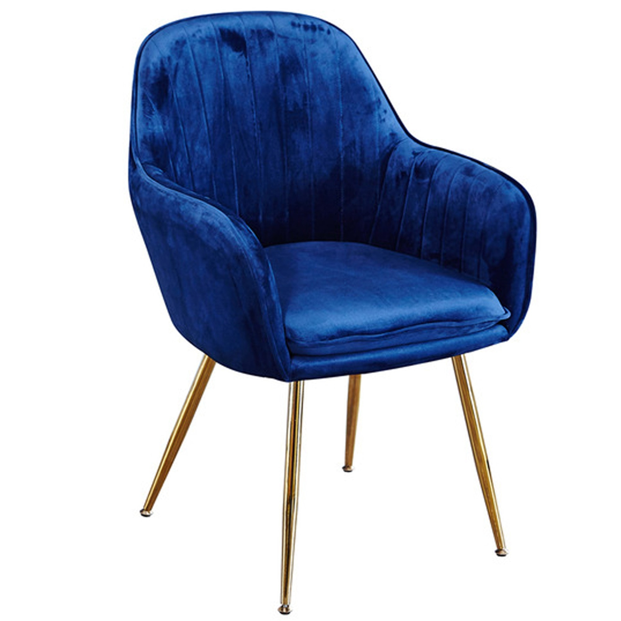 Cool Lara Royal Blue Dining Chair Pack Of 2 Ibusinesslaw Wood Chair Design Ideas Ibusinesslaworg