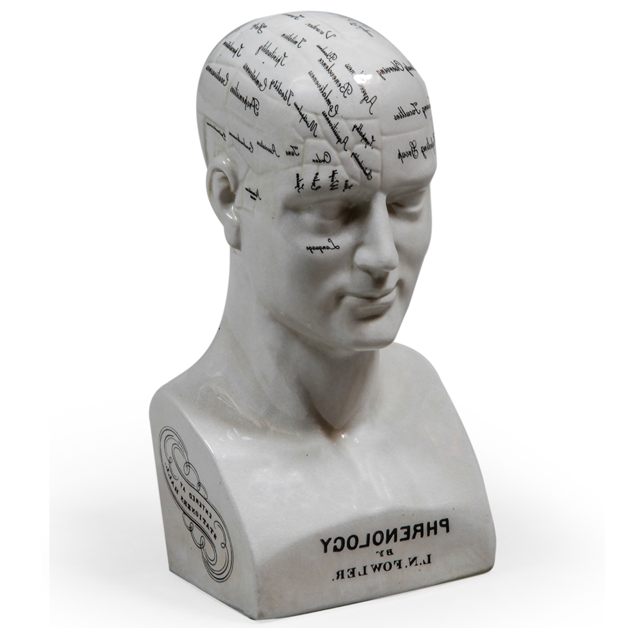 Large Ceramic Phrenology Head Home Accessories From