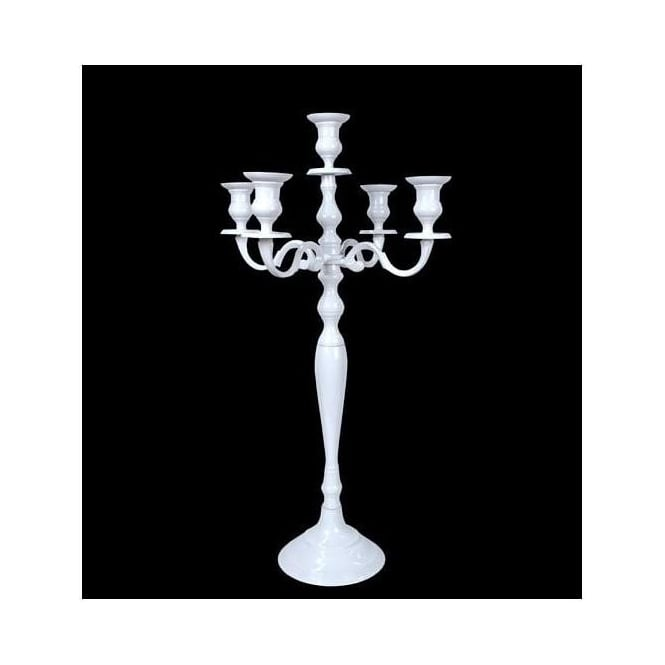 https://www.homesdirect365.co.uk/images/large-white-aluminium-antique-french-style-candelabra-p37482-24363_medium.jpg