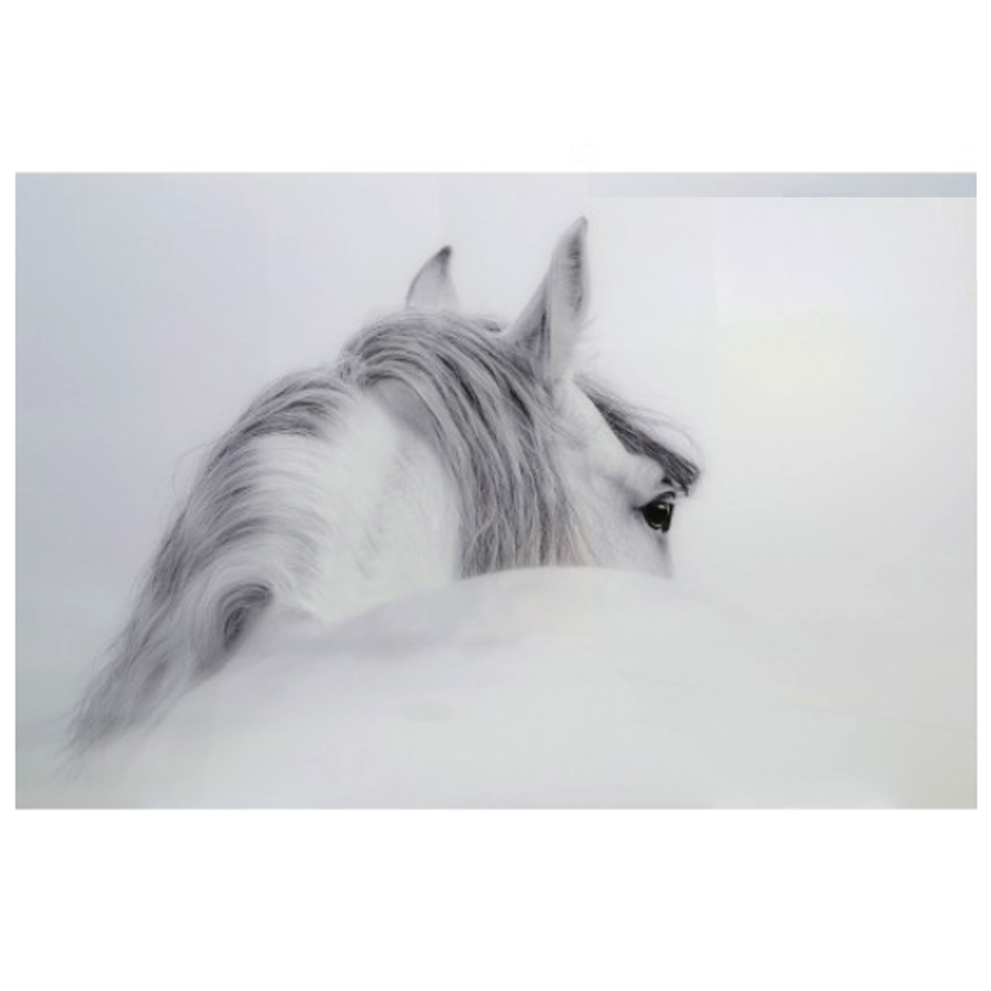 Large White Amp Grey Horse Glass Wall Art