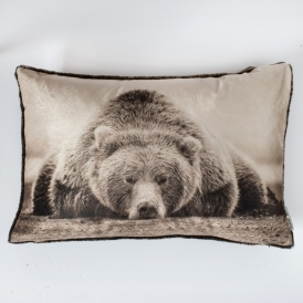 Lazy Bear Cushion