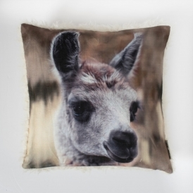 Llama Photographic Cushion Cream