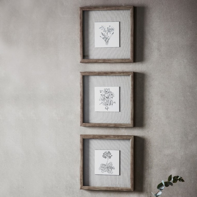 Monochrome Botanical Trio Framed Art