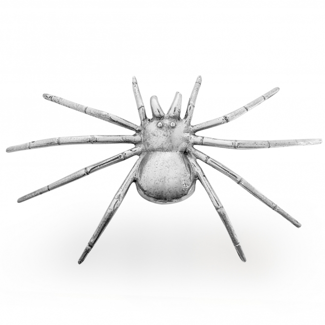 Polished Spider Wall Decor