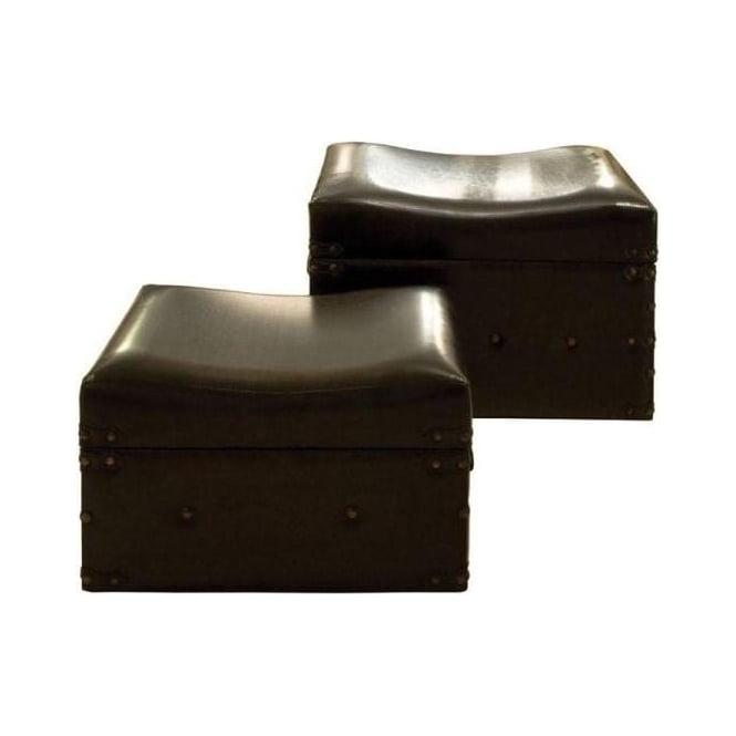 Set of 2 Faux Leather Trunks