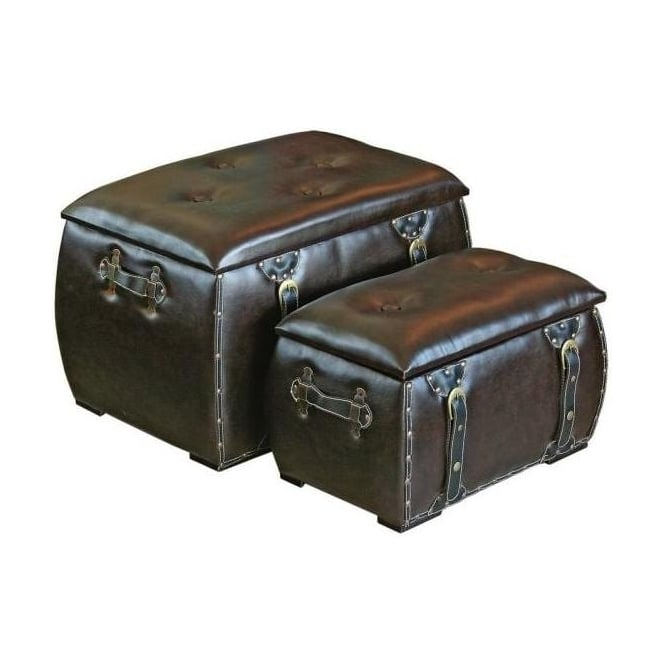 Set of Two Trunks