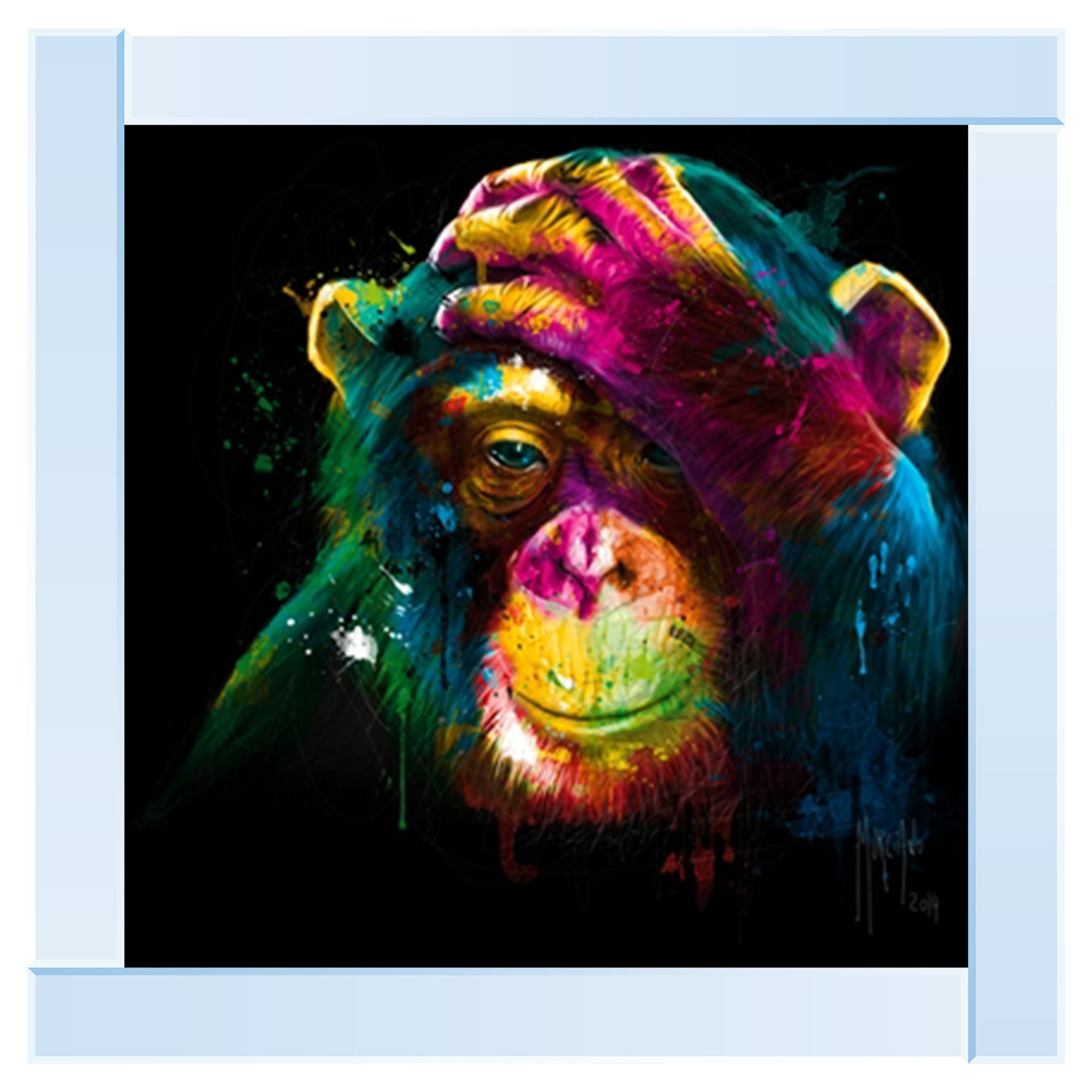Silver Mirror Multi Coloured Monkey Wall Art Home Accessories