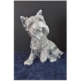 Silver Terrier Dog