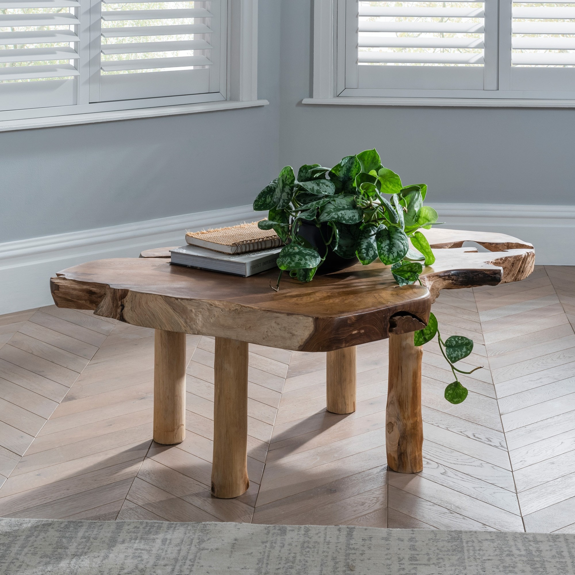 - Teak Root Coffee Table Rustic Contemporary Furniture