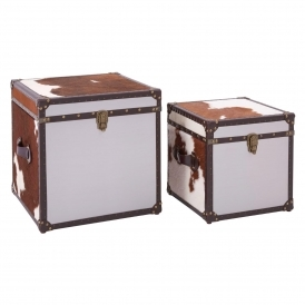 Townhouse Set of 2 Storage Trunks