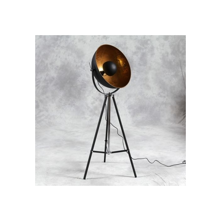 Tripod spotlight floor lamp antique french floorstanding lamps tripod spotlight floor lamp mozeypictures Choice Image